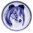 Collie - Rough Sable/White